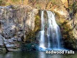 redwoodfalls2