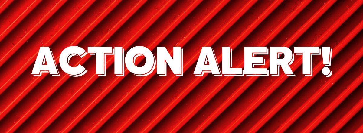 Action Alert! Graphic2