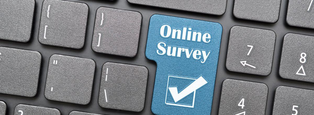 Survey Graphic1